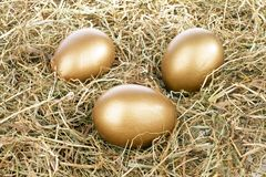 Three golden eggs in straw Stock Photography