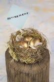 Three golden nest eggs for retirement Stock Images