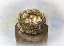 Three golden nest eggs on wooden post against blue painted backg. Round Stock Photography
