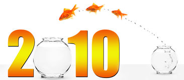 Three goldfish jumping into the new year Royalty Free Stock Photos