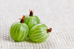 Three gooseberry fruit, on gray linen cloth Stock Photo