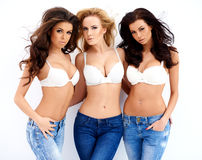 Three gorgeous sexy young women Stock Images