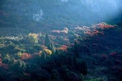 Three Gorges do desfiladeiro de Yangtze River Valley um o grupo da luz do sol Fotografia de Stock Royalty Free