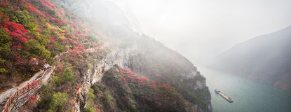 The Three Gorges leaves Royalty Free Stock Images