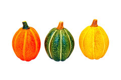Three gourds Stock Images