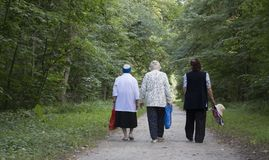 Three grandmothers, women age walk the park Royalty Free Stock Photography