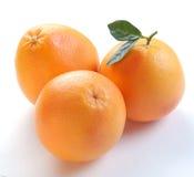 Three grapefruits Royalty Free Stock Image