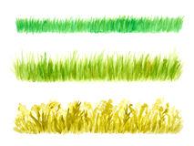 Three Grass Border Pieces Watercolor Hand Drawn. And Painted, Isolated on White Stock Photo