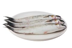 Three gray mullet fish on plate Royalty Free Stock Image