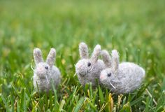Three Gray White Felted Bunnies or Rabbits in Green Grass. Three tiny wool felted gray white bunny rabbits sit together on green grass lawn Stock Photo