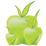 Three green apples Royalty Free Stock Image