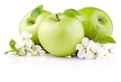 Three Green Apples with Leaf and Flowers Royalty Free Stock Photo