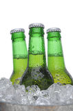 Three Green Beer Bottles in Ice Royalty Free Stock Image