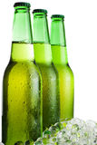 Three green beer bottles with ice Stock Photography