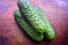 Three green ripe cucumber on a dark vintage brown background Stock Images