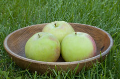 Three green juicy apples in a wooden plate on the grass Royalty Free Stock Image