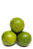 Three green limes Royalty Free Stock Photography