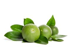 Three green limes with leaves Stock Photos
