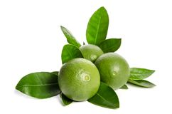 Three green limes with leaves. On white background Stock Images