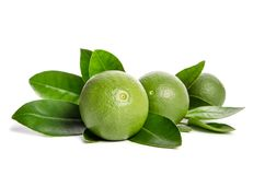 Three green limes with leaves. On white background Royalty Free Stock Images