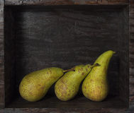 Three green pears in a wooden box Stock Images