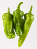 Three green pepper. On white background Royalty Free Stock Photo