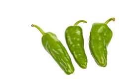 Three green peppers Stock Photography