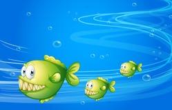 Three green piranhas under the sea. Illustration of the three green piranhas under the sea Stock Photo