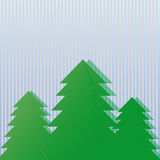 Three green spruce . Royalty Free Stock Photography