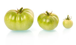 Three green tomatoes vegetables isolated Royalty Free Stock Photos