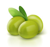 Three green vector olives Royalty Free Stock Photo