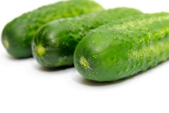 Three greenhouse cucumbers Royalty Free Stock Photo