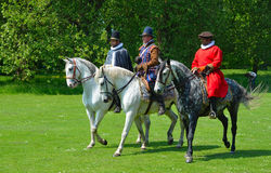 Three Grey horses  being  ridden by men wearing Elizabethan costumes. Royalty Free Stock Images