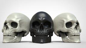 Three grey skulls Royalty Free Stock Images