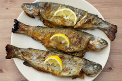 Three grilled trouts. Grilled trout with lemon on the table Stock Images