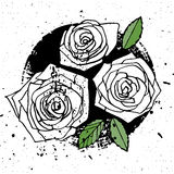 Three grunge style roses Stock Photos