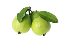 Three guava Stock Photo