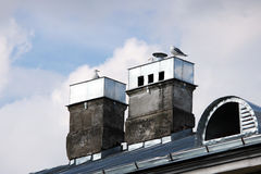 Three gulls sitting on pipes  the roof. Three gulls sitting on pipes on the roof Royalty Free Stock Photography