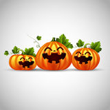 Three halloween funny pumpkins Royalty Free Stock Images