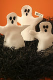Three Halloween Ghosts. 3 felt ghosts in a field of black raffia with a boo sign stock images