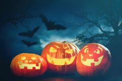 Three halloween Jack O` Lantern pumpkins Stock Photography