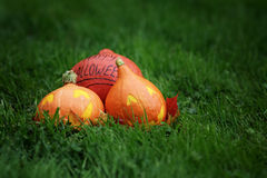 Three Halloween pumpkins on green grass Royalty Free Stock Image