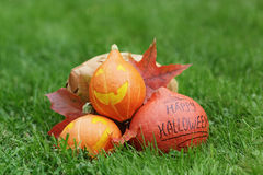 Three Halloween pumpkins on green grass Royalty Free Stock Images