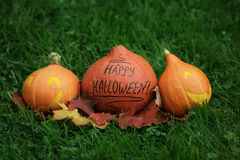 Three Halloween pumpkins on green grass stock photo
