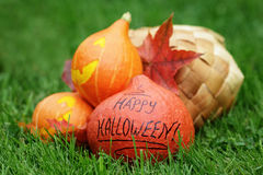 Three Halloween pumpkins on green grass Stock Image
