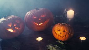 Three Halloween pumpkins head jack lantern with burning candles over black background. Halloween holidays art design stock footage