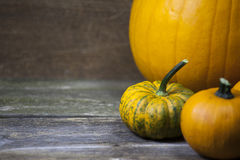 Three halloween pumpkins. Three pumpkins ready for the halloween celebrations Stock Image