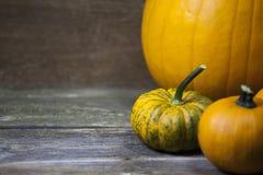 Three halloween pumpkins Stock Image