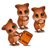 Three hamster with suitcase and biscuits Stock Images