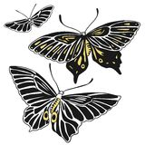 Three hand drawn vector butterflies Stock Photography